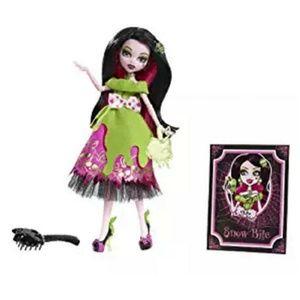 """A Monster High Story """"Snow Bite"""" Draculaura Plasti"""